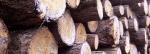 Billigt brænde – Køb briketter og brænde